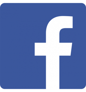 facebook_logo_detail copy